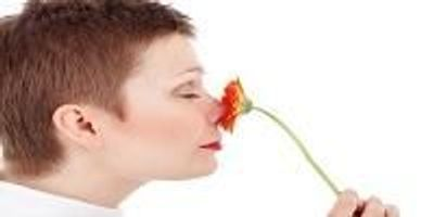 How Odors Are Turned Into Long-Term Memories