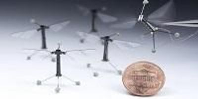 Engineers Program Tiny Robots to Move, Think Like Insects