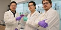 Chemists Develop Novel Washington Red Dye for Bio-Imaging