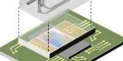 Fluorescence Microscopy on a Chip—No Lenses Required