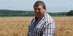 Kansas State University Researchers Help with Landmark Study of Wild Wheat Ancestor