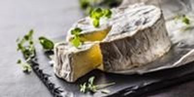 Taming the Wild Cheese Fungus