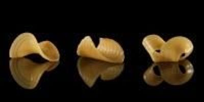 Researchers Engineer Shape-Shifting Noodles