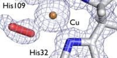 Insight into Enzyme's 3D Structure Could Cut Biofuel Costs