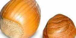 Are Tree Nut Allergies Diagnosed Too Often?