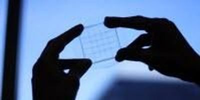 New Flexible Sensor Holds Potential for Foldable Touchscreens