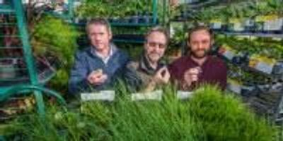 New ROOTS Program Helps Fund Project to Breed Better Crops