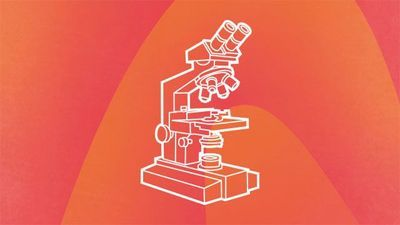 Microscopy Buyer's Guide