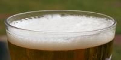 Detecting Potentially Harmful Mycotoxins in Beer