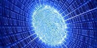 Does My Eye Deceive Me? Not with These Digital Forensics Tools