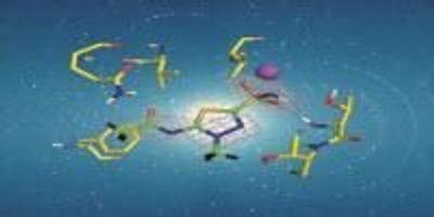 Neutron Crystallography Aids in Drug Design