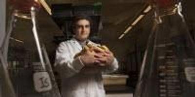 Genome Sequencing May Help Avert Banana Armageddon