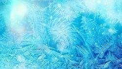 Developments in Freeze Drying