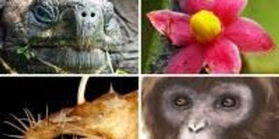ESF Lists Top 10 New Species for 2016