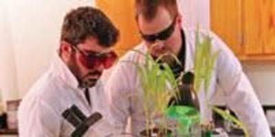 $1.8M Project Aims to Solve the Biomass Puzzle